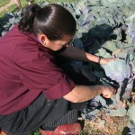 Chef-Denise-Picking-a-cabbage-at-Rancho-La-Puerta