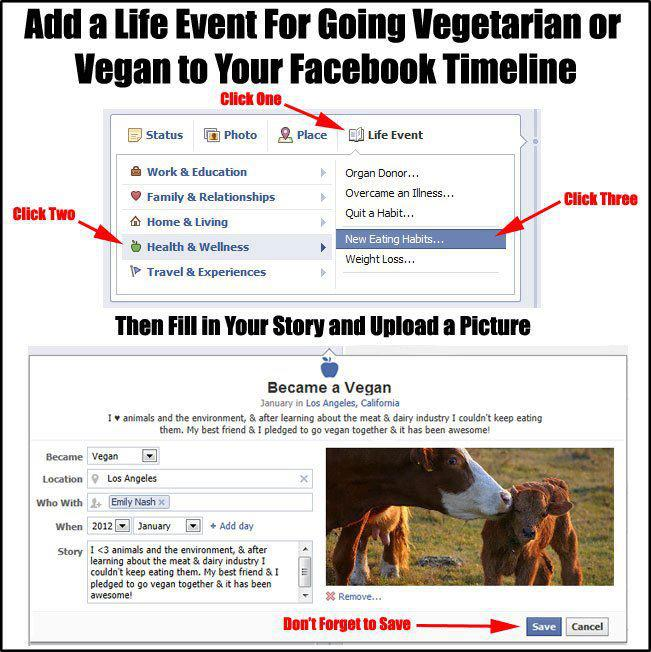 timeline life event vegan via Compassion Over Cruelty | Kale University