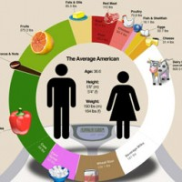 Standard American Diet, Visualized