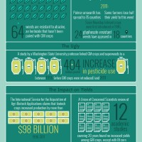 GMOs: The Good, The Bad and The Ugly Infographic
