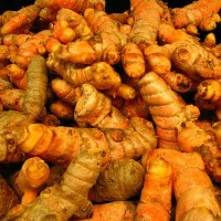 Healing Powers of Turmeric