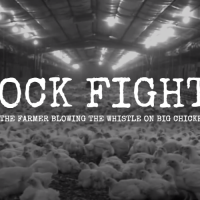 Five Movies That Aim to Expose the Meat Industry