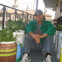 Urban Gardening with the Urban Organic Gardener