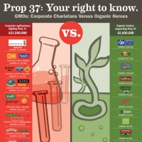 Prop 37 in California
